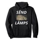 Send Lamps - Funny Moth Lamp Meme Pullover Hoodie, T Shirt, Sweatshirt