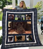 Carol Blanket TH1709 Quilt