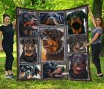 Rottweiler Blanket TH1609 Quilt