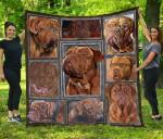 CHQDOG41015 Dogue De Bordeaux Blanket TH1609 Quilt
