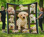 Labrador Retriever Blanket TH0509 Quilt