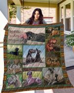 Great Dane 10 Blanket TH10072019 Quilt