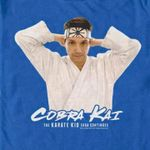 Cobra Kai The Karate Kid Saga Continues For Fan T Shirt Hoodie Sweater