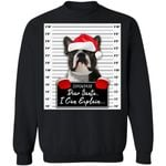 Boston Terrier Christmas Sweatshirt Dear Santa I Can Explain Funny Dog Lover VA11-99Paws-com