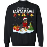 I Believe In Santa Paws Rottweiler Dog Xmas Sweater HA11-99Paws-com
