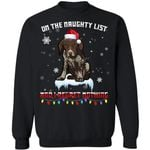 Pointer On The Naughty List Dog Xmas Sweater Gift