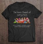 The Seven Dwarfs Of Diabetes Giddy Thirsty Hungry Dizzy Shaky Feisty And Exhausted diabetes Dizzy Exhausted Hungry Seven Dwarfs T Shirt