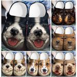 PREMIUM DOG BORDER COLLIE FACE CC CROCBAND CLOG COLLECTION