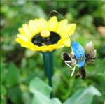 Likelife Solar-Powered Dancing Hummingbirds