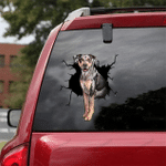 Catahoula Cracked Car Decal Sticker - NH0821