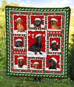 Dachshund Christmas DTC2311764 Quilt Blanket