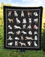 Bull Terrier DTC2311806 Quilt Blanket