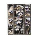 Raccoon MMC0412128 Fleece Blanket