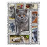 British Shorthair Cat MMC041247 Fleece Blanket