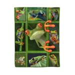 Frog MMC0412101 Fleece Blanket