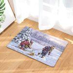 Winter Doormat DHC07061921