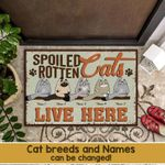 Personalized Funny Cat Doormat DHC07061071