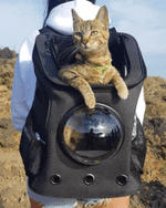 """""""The Fat Cat"""" Cat Backpack - For Larger Cats"""