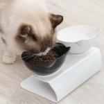 Katty™ Smart Orthopedic Anti-Vomit Cat Bowl
