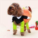 CREEX™ Funny Pumpkin Pet Halloween Costume【🎃BUY 2 FREE SHIPPING】