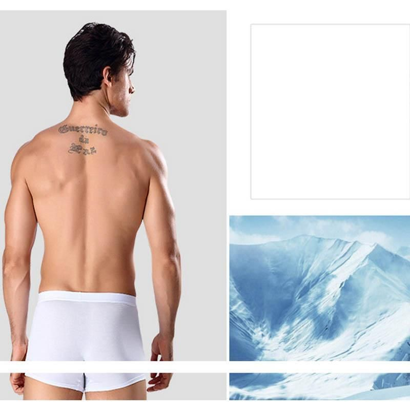 Solid Color breathable Slim Fit Type and Comfortable Underwear
