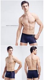 Panties Mens Underwear Meryl Boxers Modal Boxer Men Sexy Ventilate Boxers Mens Underwear