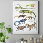 Green Anole, Forest Iguana - Lizard - Reptile Canvas Prints Type A KH250110