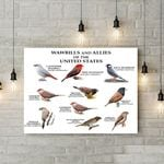 Waxbills And Allies Canvas Prints Type A KH24032103