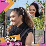 EZ hair Clip