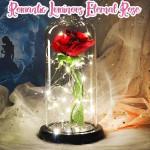 Romantic Luminous Eternal Rose