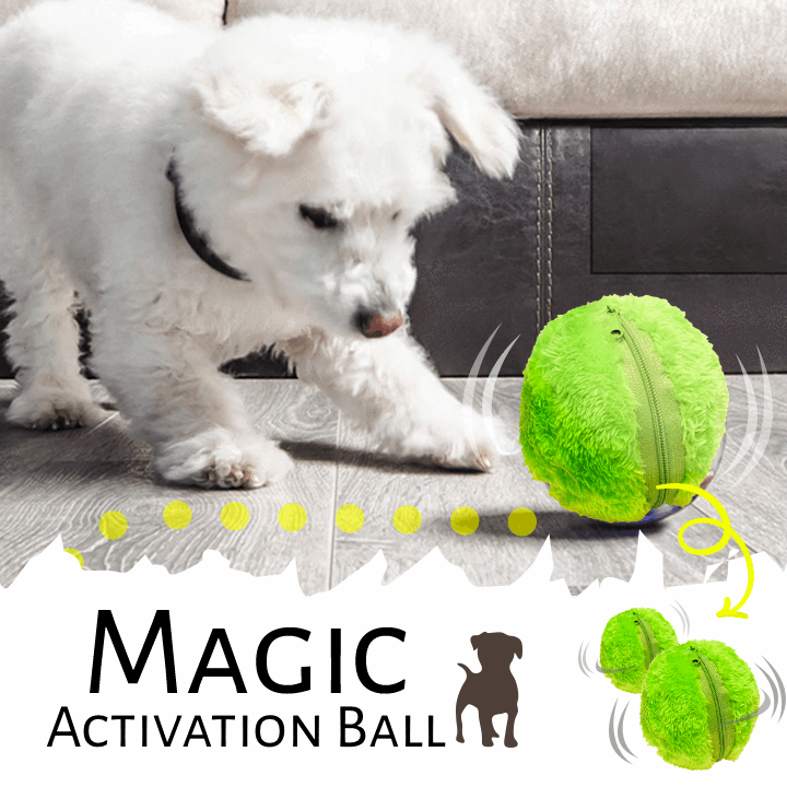 Magic Activation Ball (Set of 4)