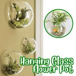 Hanging Glass Flower Pot