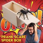 Hilarious Spider Prank Box