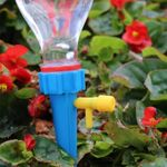 Plant Watering Funnel