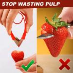 Multi-Purpose Fruit Stem Huller