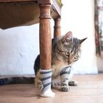 Cat Paw Chair Socks (4pcs) - LimeTrifle