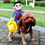 Funny Cowboy Dog Costumes