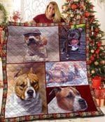 American Staffordshire Terrier Have That Boy Quilt Blanket Dhc04011822Dd