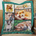 American Staffordshire Terrier1 Quilt Blanket A8Xco Dhc0301544Dd