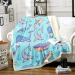 3d Shark HM1401007TT Sherpa Fleece Blanket