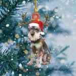 Schnauzer Light Christmas Shape Ornament / DVHDVH061220