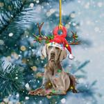 Weimaraner Christmas Lights Shape Ornament / DVHPQH081220