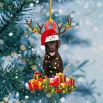 Chocolate Labrador Christmas Lights Shape Ornament