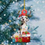Great Dane Christmas Lights Shape Ornament / DVHPQH071220