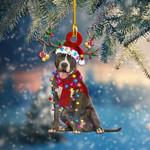 Pitbull Christmas Light Shape Ornament / DKHDTN051220