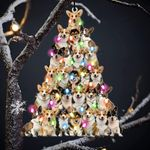 Corgi lovely tree gift for corgi lover gift for corgi mom ornament