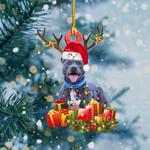 Staffy Christmas Lights Shape Ornament