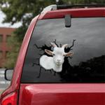[sk1774-snf-tpa] Pygmy Goat Crack Car Sticker cattle Lover
