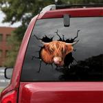 [sk1305-snf-ptd] Scottish Highland Cow Crack Sticker cattle Lover