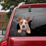 [DT0781-snf-tnt] Australian Cattle Dog Crack Car Sticker Dog Lovers